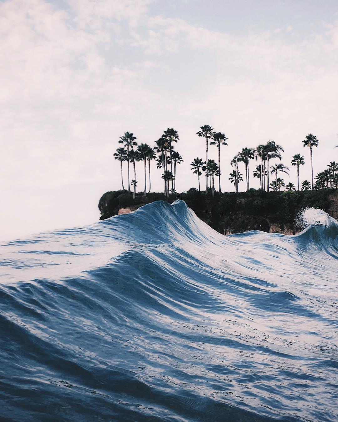 Waves FedeSurfbags