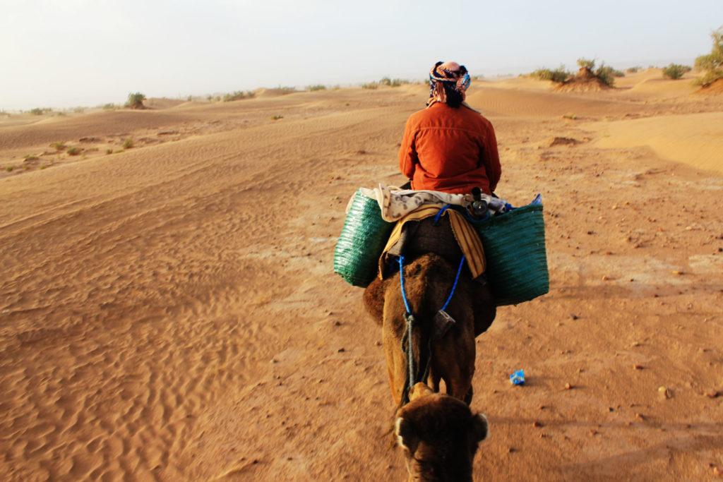 Western Sahara by Fede Surfbags